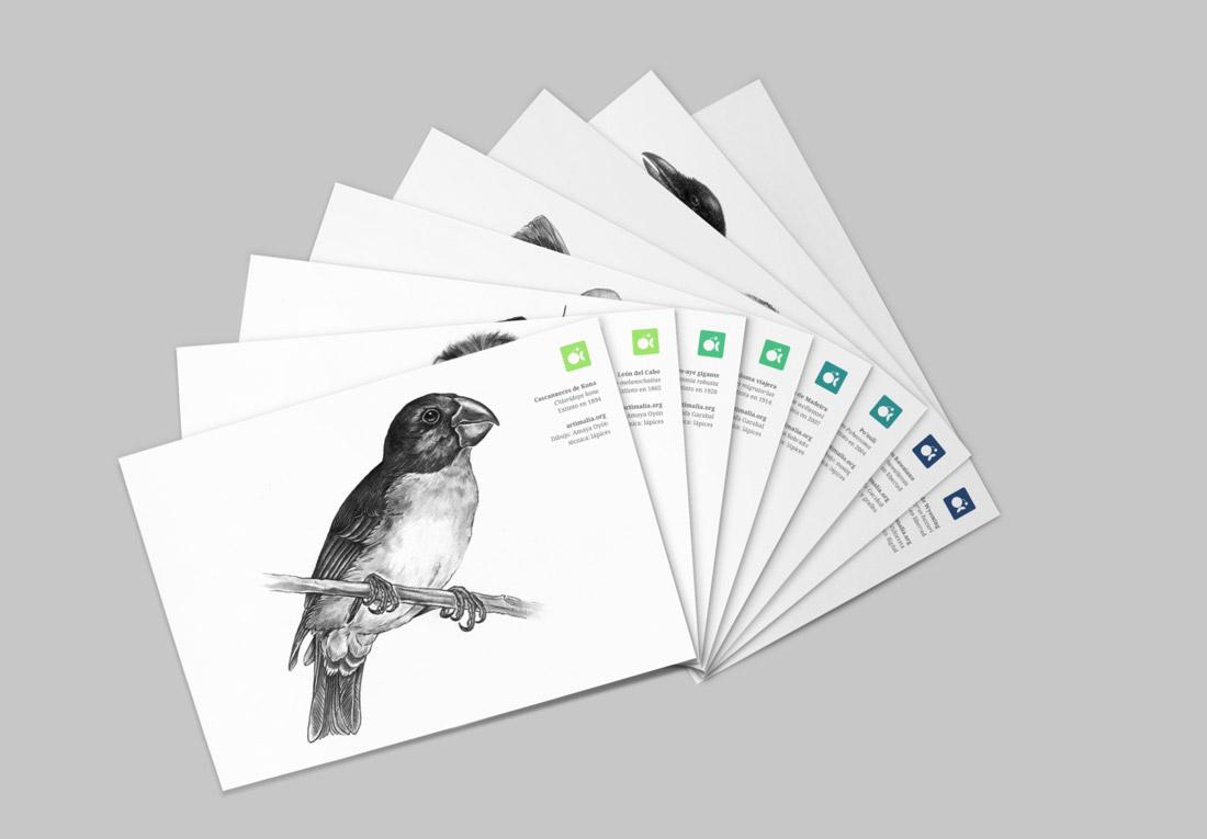 diseño de postales corporativas para Artimalia