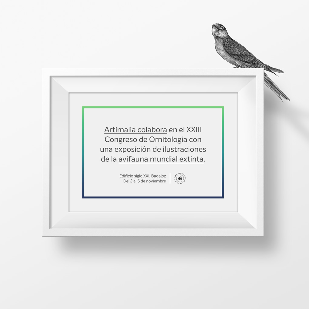 artimalia congreso de ornitología