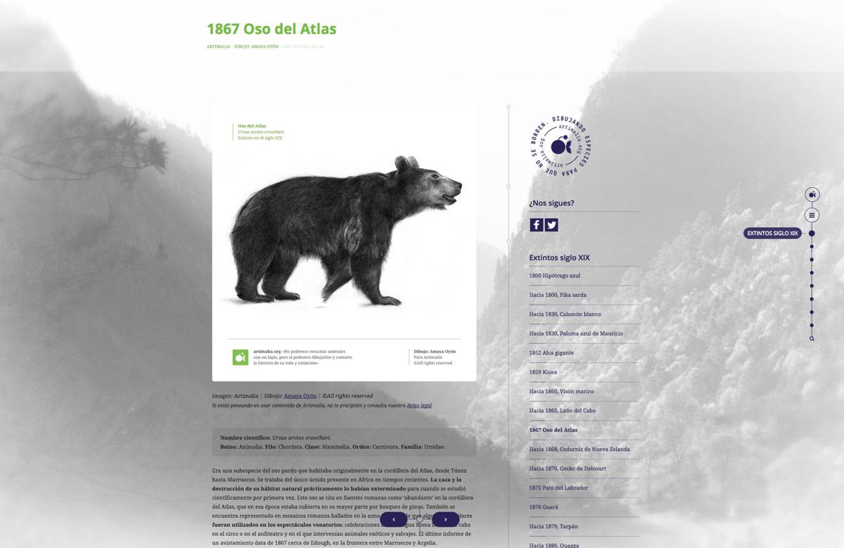 detalle de apartado de diseño de página web para Artimalia