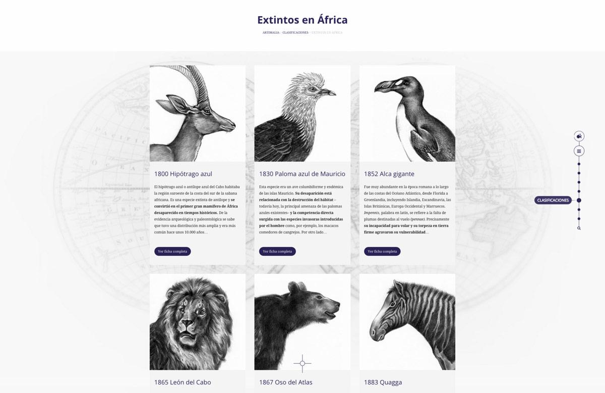 detalle de diseño de catálogo online para Artimalia