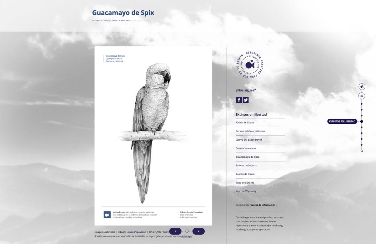 diseño de pantalla de página web para Artimalia