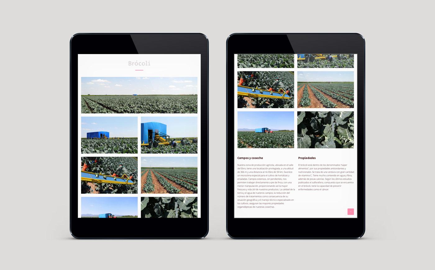 diseño de web sección álbum multimedia en 2 ipads para Actiture