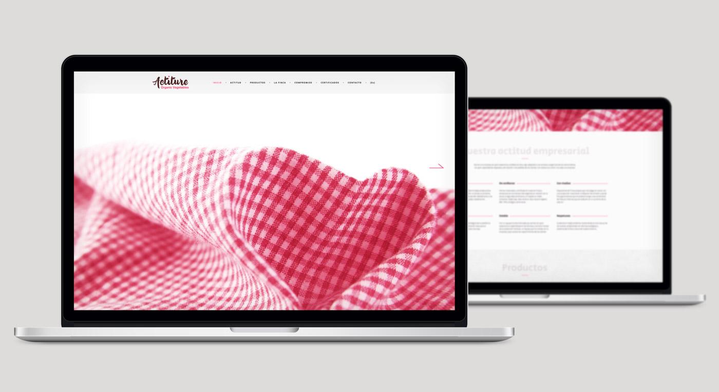 diseño de web sección diseño web sección Inicio para Actiture
