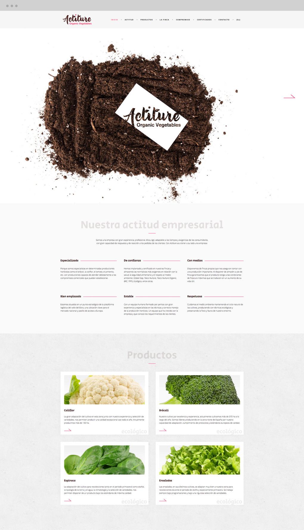 diseño de página web para Actiture