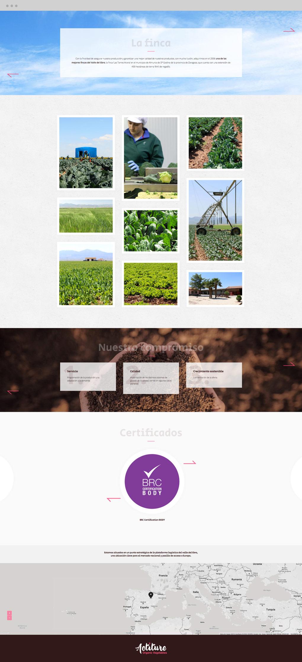 presentación de diseño de homepage para web de Actiture