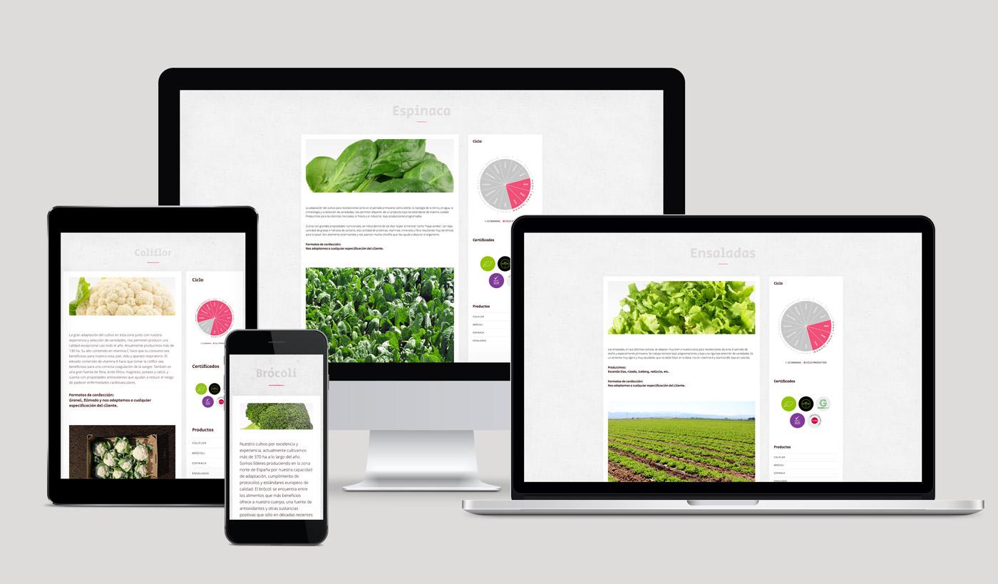 diseño de web sección álbum multimedia multidispositivo para Actiture