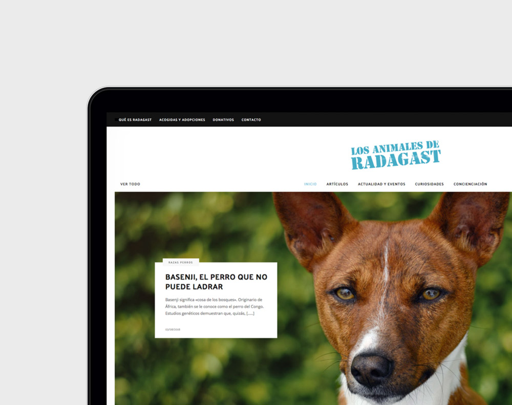 Diseno de magazine digital de naturaleza y animales presentación de diseño en 1 portátil